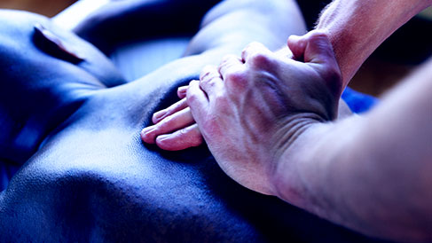 Advanced Massage Therapy – to relax the mind and keep the body supple